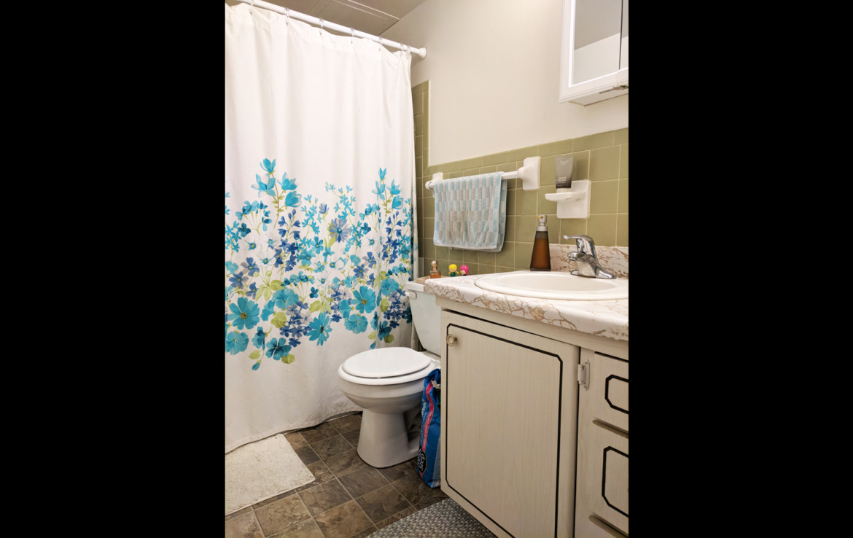 Arlington Heights Bathroom